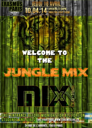 WELCOME TO THE JUNGLE MIX Poster